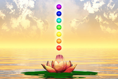 Chakra Australian Flower Essences Love Remedies